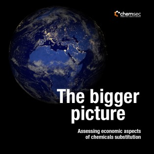 The Bigger Picture – Assessing economic aspects of chemicals substitution (2016)